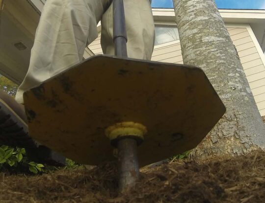 Deep Root Injection-Palm Beach County Tree Trimming and Tree Removal Services-We Offer Tree Trimming Services, Tree Removal, Tree Pruning, Tree Cutting, Residential and Commercial Tree Trimming Services, Storm Damage, Emergency Tree Removal, Land Clearing, Tree Companies, Tree Care Service, Stump Grinding, and we're the Best Tree Trimming Company Near You Guaranteed!