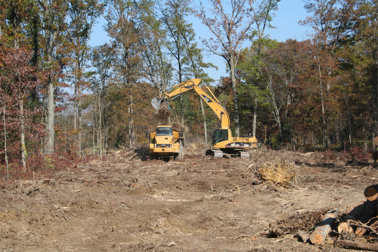 Land Clearing-Palm Beach County Tree Trimming and Tree Removal Services-We Offer Tree Trimming Services, Tree Removal, Tree Pruning, Tree Cutting, Residential and Commercial Tree Trimming Services, Storm Damage, Emergency Tree Removal, Land Clearing, Tree Companies, Tree Care Service, Stump Grinding, and we're the Best Tree Trimming Company Near You Guaranteed!