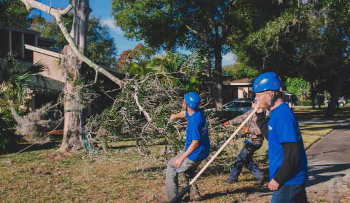 Tequesta-Palm Beach County Tree Trimming and Tree Removal Services-We Offer Tree Trimming Services, Tree Removal, Tree Pruning, Tree Cutting, Residential and Commercial Tree Trimming Services, Storm Damage, Emergency Tree Removal, Land Clearing, Tree Companies, Tree Care Service, Stump Grinding, and we're the Best Tree Trimming Company Near You Guaranteed!