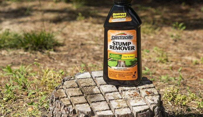 Chemical for stump removal-Palm Beach County Tree Trimming and Tree Removal Services-We Offer Tree Trimming Services, Tree Removal, Tree Pruning, Tree Cutting, Residential and Commercial Tree Trimming Services, Storm Damage, Emergency Tree Removal, Land Clearing, Tree Companies, Tree Care Service, Stump Grinding, and we're the Best Tree Trimming Company Near You Guaranteed!