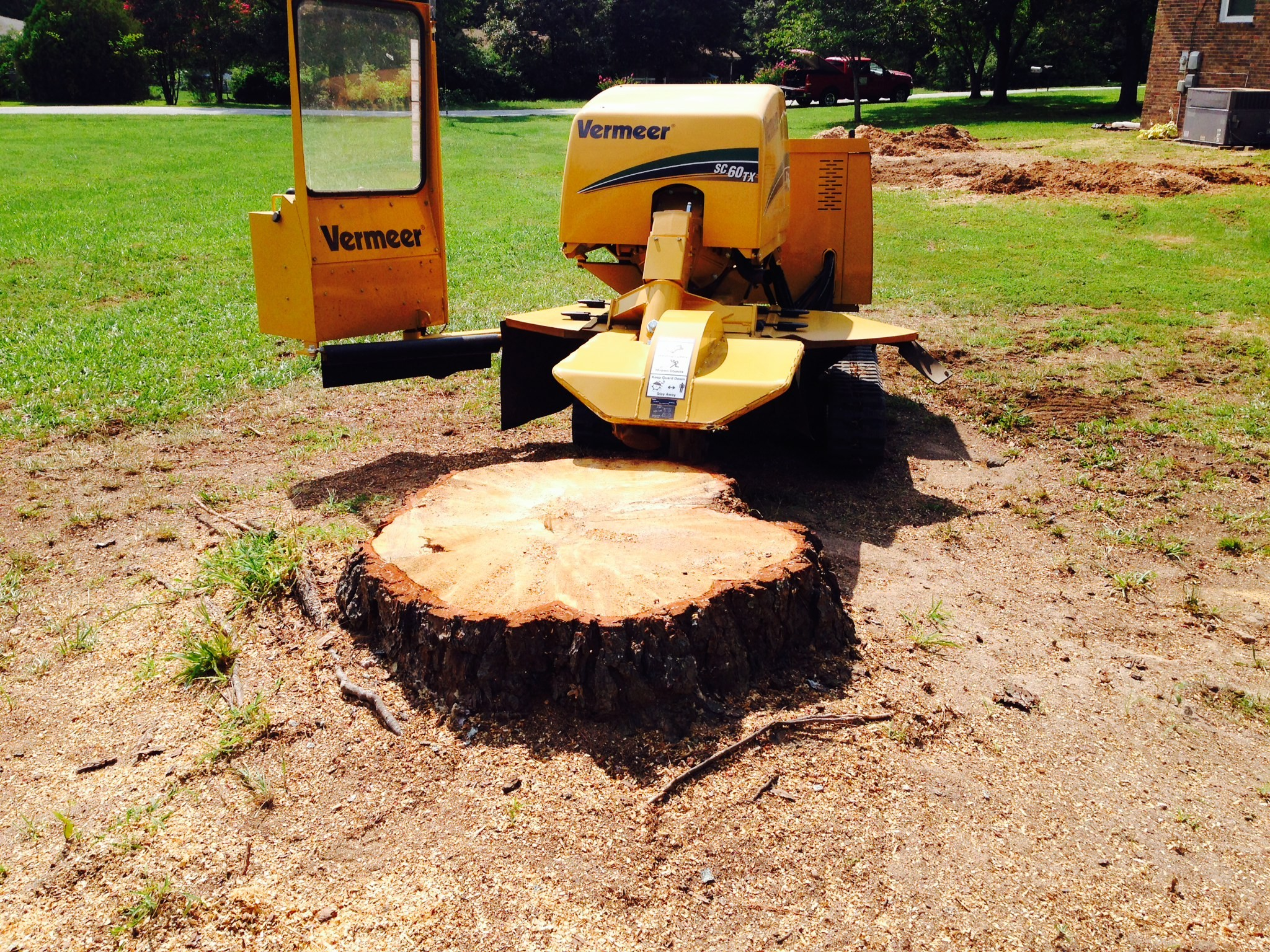 Cost for stump removal-Palm Beach County Tree Trimming and Tree Removal Services-We Offer Tree Trimming Services, Tree Removal, Tree Pruning, Tree Cutting, Residential and Commercial Tree Trimming Services, Storm Damage, Emergency Tree Removal, Land Clearing, Tree Companies, Tree Care Service, Stump Grinding, and we're the Best Tree Trimming Company Near You Guaranteed!