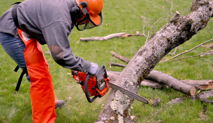 Emergency Tree Removal Near Me -Palm Beach County Tree Trimming and Tree Removal Services-We Offer Tree Trimming Services, Tree Removal, Tree Pruning, Tree Cutting, Residential and Commercial Tree Trimming Services, Storm Damage, Emergency Tree Removal, Land Clearing, Tree Companies, Tree Care Service, Stump Grinding, and we're the Best Tree Trimming Company Near You Guaranteed!