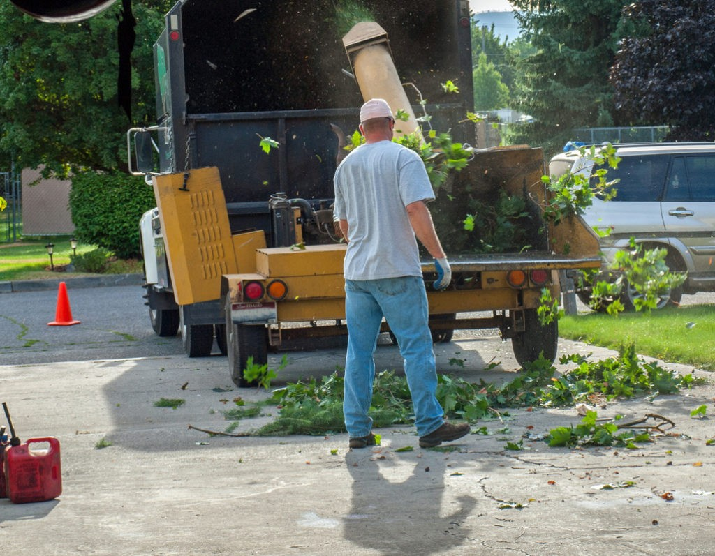 Florida tree service-Palm Beach County Tree Trimming and Tree Removal Services-We Offer Tree Trimming Services, Tree Removal, Tree Pruning, Tree Cutting, Residential and Commercial Tree Trimming Services, Storm Damage, Emergency Tree Removal, Land Clearing, Tree Companies, Tree Care Service, Stump Grinding, and we're the Best Tree Trimming Company Near You Guaranteed!