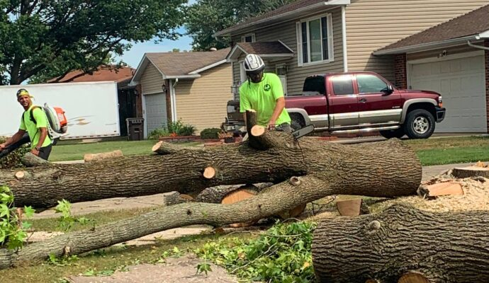 How to price tree trimming-Palm Beach County Tree Trimming and Tree Removal Services-We Offer Tree Trimming Services, Tree Removal, Tree Pruning, Tree Cutting, Residential and Commercial Tree Trimming Services, Storm Damage, Emergency Tree Removal, Land Clearing, Tree Companies, Tree Care Service, Stump Grinding, and we're the Best Tree Trimming Company Near You Guaranteed!