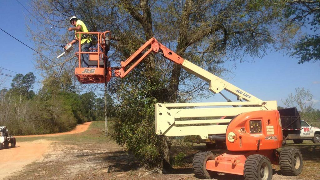Lift For Tree Trimming-Palm Beach County Tree Trimming and Tree Removal Services-We Offer Tree Trimming Services, Tree Removal, Tree Pruning, Tree Cutting, Residential and Commercial Tree Trimming Services, Storm Damage, Emergency Tree Removal, Land Clearing, Tree Companies, Tree Care Service, Stump Grinding, and we're the Best Tree Trimming Company Near You Guaranteed!