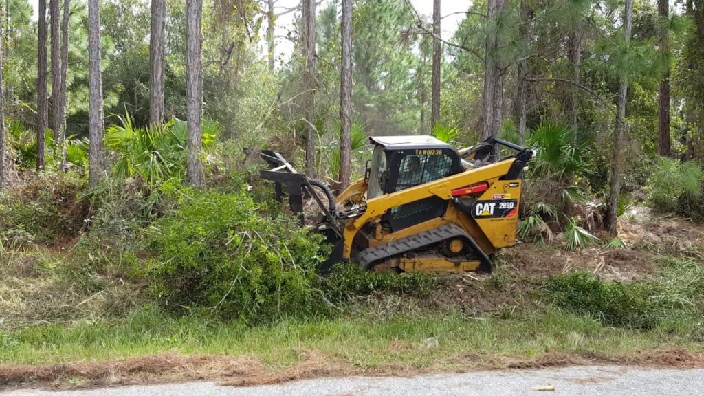 Lot clearing-Palm Beach County Tree Trimming and Tree Removal Services-We Offer Tree Trimming Services, Tree Removal, Tree Pruning, Tree Cutting, Residential and Commercial Tree Trimming Services, Storm Damage, Emergency Tree Removal, Land Clearing, Tree Companies, Tree Care Service, Stump Grinding, and we're the Best Tree Trimming Company Near You Guaranteed!