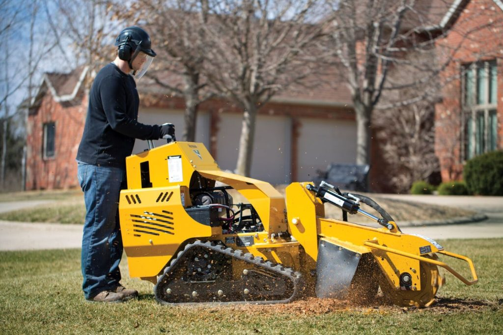 Professional stump grinder-Palm Beach County Tree Trimming and Tree Removal Services-We Offer Tree Trimming Services, Tree Removal, Tree Pruning, Tree Cutting, Residential and Commercial Tree Trimming Services, Storm Damage, Emergency Tree Removal, Land Clearing, Tree Companies, Tree Care Service, Stump Grinding, and we're the Best Tree Trimming Company Near You Guaranteed!