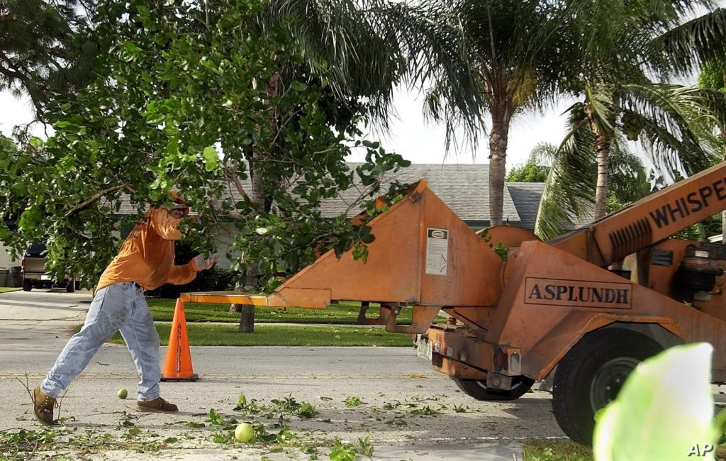 Residential Tree Services Near Me Palm Beach County--Palm Beach County Tree Trimming and Tree Removal Services-We Offer Tree Trimming Services, Tree Removal, Tree Pruning, Tree Cutting, Residential and Commercial Tree Trimming Services, Storm Damage, Emergency Tree Removal, Land Clearing, Tree Companies, Tree Care Service, Stump Grinding, and we're the Best Tree Trimming Company Near You Guaranteed!