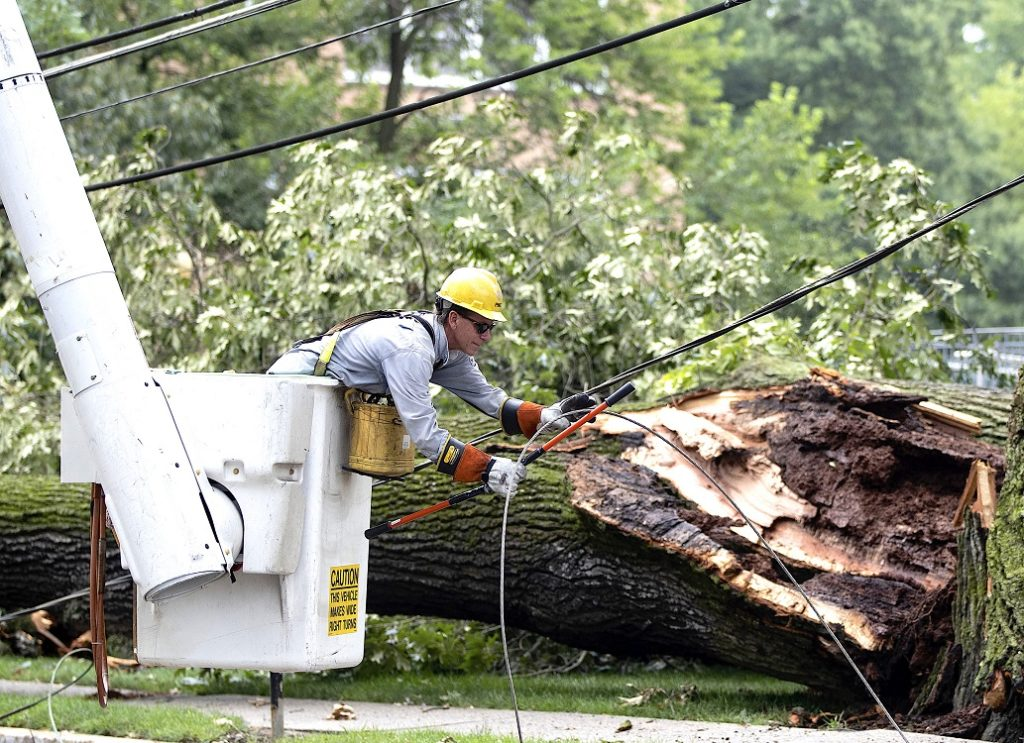 Storm-Damage-Near-Me-Palm Beach County Tree Trimming and Tree Removal Services-We Offer Tree Trimming Services, Tree Removal, Tree Pruning, Tree Cutting, Residential and Commercial Tree Trimming Services, Storm Damage, Emergency Tree Removal, Land Clearing, Tree Companies, Tree Care Service, Stump Grinding, and we're the Best Tree Trimming Company Near You Guaranteed!