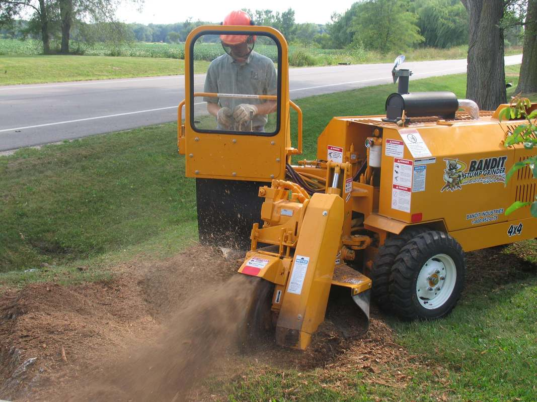 Stump grinder company near me-Palm Beach County Tree Trimming and Tree Removal Services-We Offer Tree Trimming Services, Tree Removal, Tree Pruning, Tree Cutting, Residential and Commercial Tree Trimming Services, Storm Damage, Emergency Tree Removal, Land Clearing, Tree Companies, Tree Care Service, Stump Grinding, and we're the Best Tree Trimming Company Near You Guaranteed!