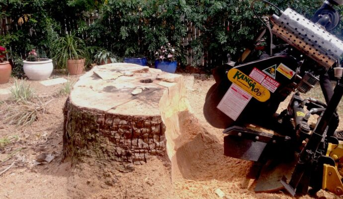 Stump removal average cost-Palm Beach County Tree Trimming and Tree Removal Services-We Offer Tree Trimming Services, Tree Removal, Tree Pruning, Tree Cutting, Residential and Commercial Tree Trimming Services, Storm Damage, Emergency Tree Removal, Land Clearing, Tree Companies, Tree Care Service, Stump Grinding, and we're the Best Tree Trimming Company Near You Guaranteed!