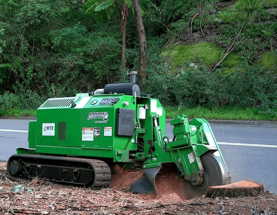 Stump removal contractors-Palm Beach County Tree Trimming and Tree Removal Services-We Offer Tree Trimming Services, Tree Removal, Tree Pruning, Tree Cutting, Residential and Commercial Tree Trimming Services, Storm Damage, Emergency Tree Removal, Land Clearing, Tree Companies, Tree Care Service, Stump Grinding, and we're the Best Tree Trimming Company Near You Guaranteed!