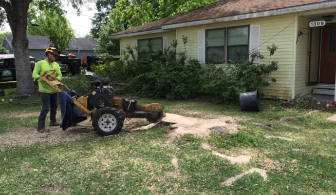 Stump removal service near me-Palm Beach County Tree Trimming and Tree Removal Services-We Offer Tree Trimming Services, Tree Removal, Tree Pruning, Tree Cutting, Residential and Commercial Tree Trimming Services, Storm Damage, Emergency Tree Removal, Land Clearing, Tree Companies, Tree Care Service, Stump Grinding, and we're the Best Tree Trimming Company Near You Guaranteed!