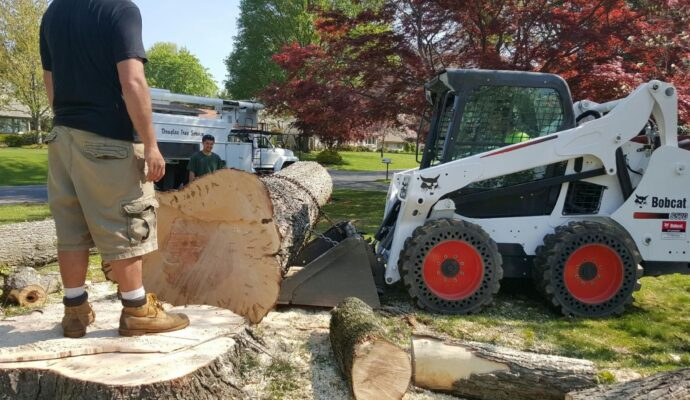 Tree Trimming Business-Palm Beach County Tree Trimming and Tree Removal Services-We Offer Tree Trimming Services, Tree Removal, Tree Pruning, Tree Cutting, Residential and Commercial Tree Trimming Services, Storm Damage, Emergency Tree Removal, Land Clearing, Tree Companies, Tree Care Service, Stump Grinding, and we're the Best Tree Trimming Company Near You Guaranteed!