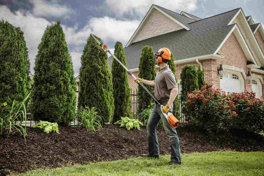 Tree Trimming Cost-Palm Beach County Tree Trimming and Tree Removal Services-We Offer Tree Trimming Services, Tree Removal, Tree Pruning, Tree Cutting, Residential and Commercial Tree Trimming Services, Storm Damage, Emergency Tree Removal, Land Clearing, Tree Companies, Tree Care Service, Stump Grinding, and we're the Best Tree Trimming Company Near You Guaranteed!