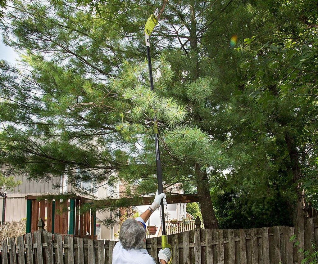 Tree Trimming Pole-Palm Beach County Tree Trimming and Tree Removal Services-We Offer Tree Trimming Services, Tree Removal, Tree Pruning, Tree Cutting, Residential and Commercial Tree Trimming Services, Storm Damage, Emergency Tree Removal, Land Clearing, Tree Companies, Tree Care Service, Stump Grinding, and we're the Best Tree Trimming Company Near You Guaranteed!