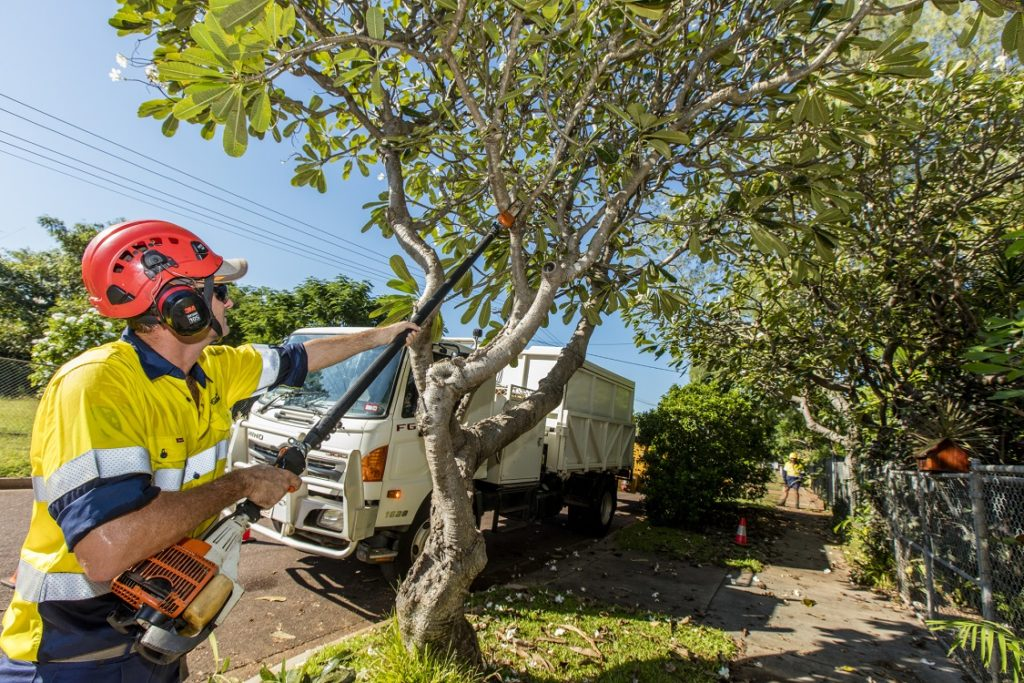 Tree Trimming Prices-Palm Beach County Tree Trimming and Tree Removal Services-We Offer Tree Trimming Services, Tree Removal, Tree Pruning, Tree Cutting, Residential and Commercial Tree Trimming Services, Storm Damage, Emergency Tree Removal, Land Clearing, Tree Companies, Tree Care Service, Stump Grinding, and we're the Best Tree Trimming Company Near You Guaranteed!