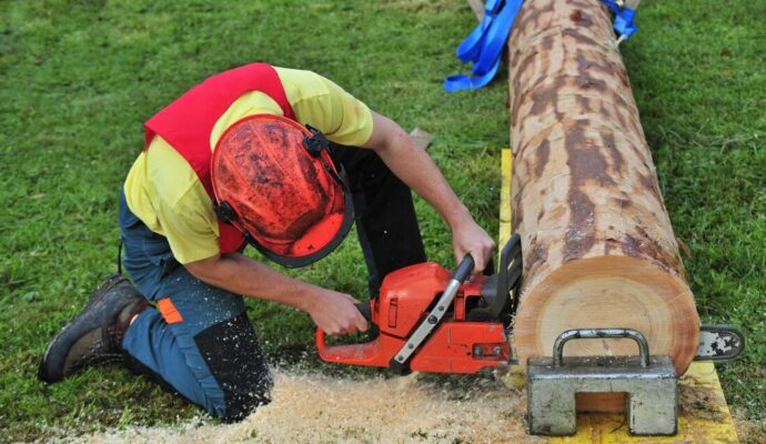 Tree Trimming Rates-Palm Beach County Tree Trimming and Tree Removal Services-We Offer Tree Trimming Services, Tree Removal, Tree Pruning, Tree Cutting, Residential and Commercial Tree Trimming Services, Storm Damage, Emergency Tree Removal, Land Clearing, Tree Companies, Tree Care Service, Stump Grinding, and we're the Best Tree Trimming Company Near You Guaranteed!