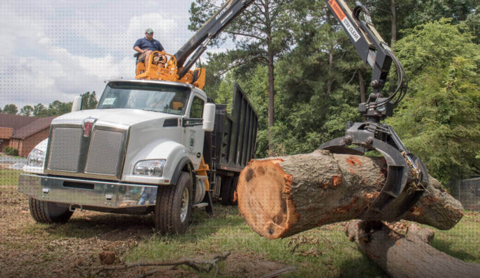 Tree care services near me-Palm Beach County Tree Trimming and Tree Removal Services-We Offer Tree Trimming Services, Tree Removal, Tree Pruning, Tree Cutting, Residential and Commercial Tree Trimming Services, Storm Damage, Emergency Tree Removal, Land Clearing, Tree Companies, Tree Care Service, Stump Grinding, and we're the Best Tree Trimming Company Near You Guaranteed!