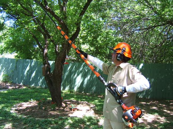 Tree pruning near me Palm Beach County-Palm Beach County Tree Trimming and Tree Removal Services-We Offer Tree Trimming Services, Tree Removal, Tree Pruning, Tree Cutting, Residential and Commercial Tree Trimming Services, Storm Damage, Emergency Tree Removal, Land Clearing, Tree Companies, Tree Care Service, Stump Grinding, and we're the Best Tree Trimming Company Near You Guaranteed!