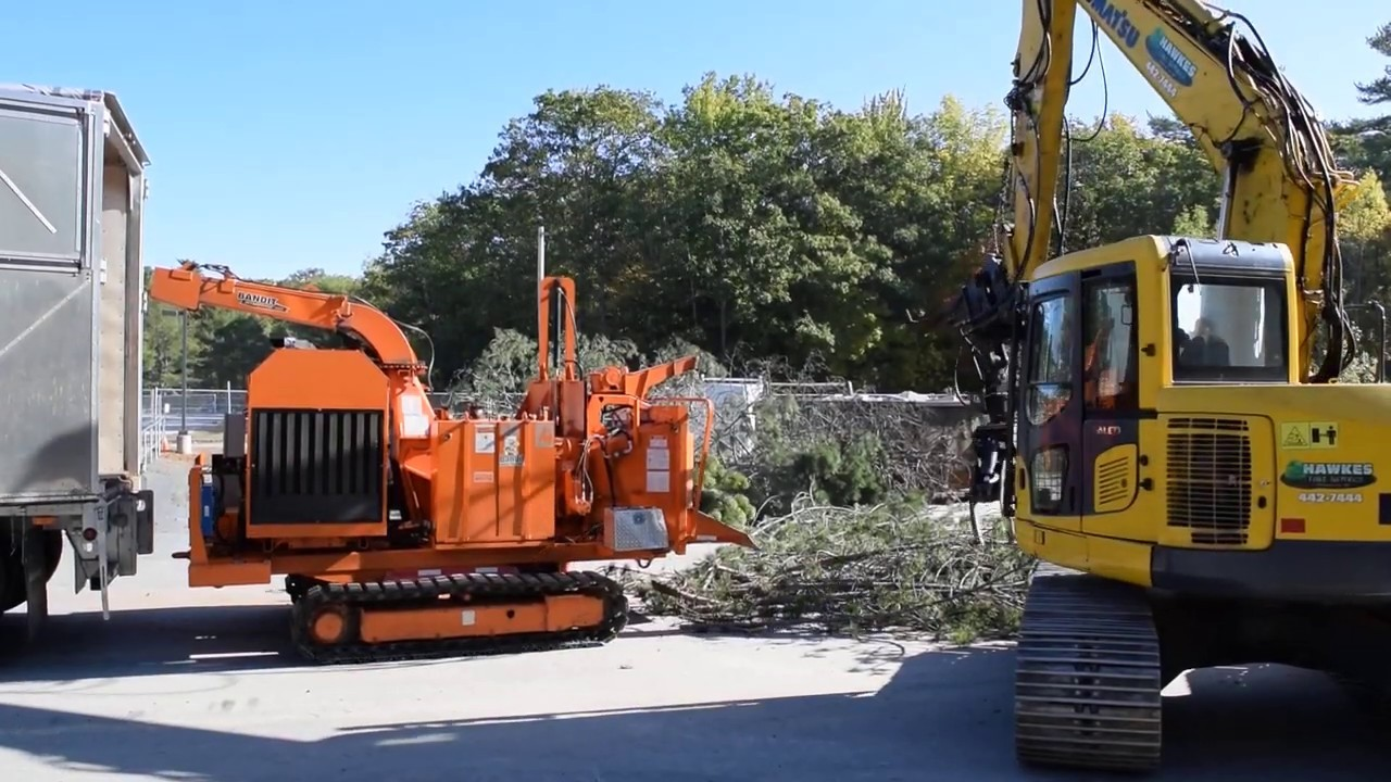 Tree removing service-Palm Beach County Tree Trimming and Tree Removal Services-We Offer Tree Trimming Services, Tree Removal, Tree Pruning, Tree Cutting, Residential and Commercial Tree Trimming Services, Storm Damage, Emergency Tree Removal, Land Clearing, Tree Companies, Tree Care Service, Stump Grinding, and we're the Best Tree Trimming Company Near You Guaranteed!