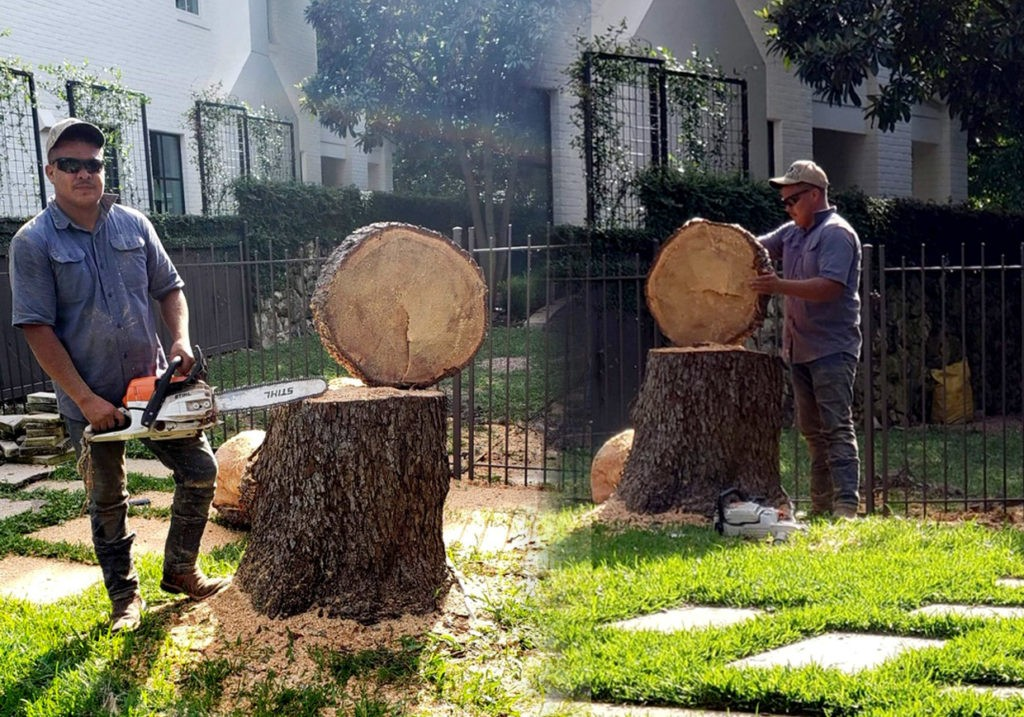 Tree service contractors-Palm Beach County Tree Trimming and Tree Removal Services-We Offer Tree Trimming Services, Tree Removal, Tree Pruning, Tree Cutting, Residential and Commercial Tree Trimming Services, Storm Damage, Emergency Tree Removal, Land Clearing, Tree Companies, Tree Care Service, Stump Grinding, and we're the Best Tree Trimming Company Near You Guaranteed!