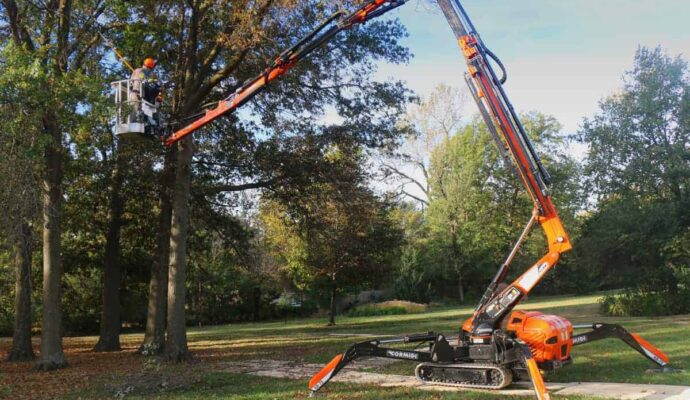 Tree services near me-Palm Beach County Tree Trimming and Tree Removal Services-We Offer Tree Trimming Services, Tree Removal, Tree Pruning, Tree Cutting, Residential and Commercial Tree Trimming Services, Storm Damage, Emergency Tree Removal, Land Clearing, Tree Companies, Tree Care Service, Stump Grinding, and we're the Best Tree Trimming Company Near You Guaranteed!