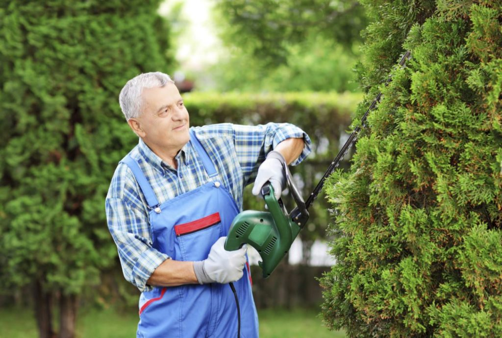 Tree treatment services-Palm Beach County Tree Trimming and Tree Removal Services-We Offer Tree Trimming Services, Tree Removal, Tree Pruning, Tree Cutting, Residential and Commercial Tree Trimming Services, Storm Damage, Emergency Tree Removal, Land Clearing, Tree Companies, Tree Care Service, Stump Grinding, and we're the Best Tree Trimming Company Near You Guaranteed!